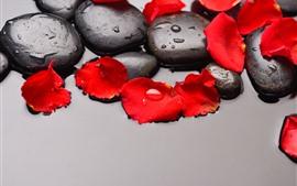 Preview wallpaper Cobblestone, red rose petals, water