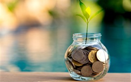 Preview wallpaper Coins, bank, plants, green leaves