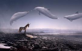 壁紙のプレビュー クリエイティブ画像、鹿馬、角、空のクジラ飛行