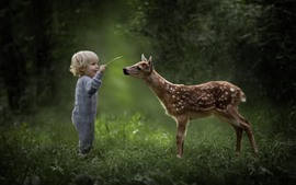 Preview wallpaper Cute little boy and deer