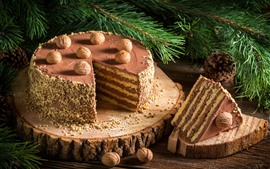 Preview wallpaper Delicious chocolate cake, dessert, nuts, spruce twigs