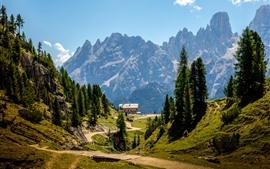 Dolomites, Italy, Alps, camp, trees