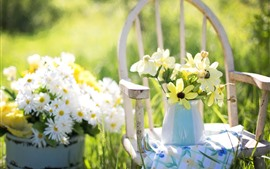 Preview wallpaper Flowers, vase, chair, summer