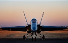 Hornet CF-18 fighter front view