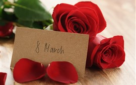 8 de março, rosas vermelhas