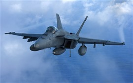 Preview wallpaper McDonnell Douglas FA-18 bomber