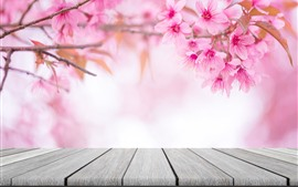 Preview wallpaper Spring flowers, pink sakura bloom, glare