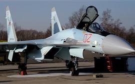 Aperçu fond d'écran Su-35S combattant