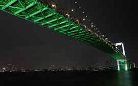 Preview wallpaper Tokyo, Japan, Rainbow Bridge, river, night, city