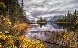 Preview wallpaper Trees, mountains, lake, island, autumn