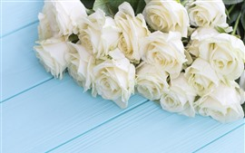 Preview wallpaper White roses, blue wood board