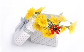 Preview wallpaper Yellow flowers, box, gift, white background