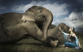 Preview wallpaper Asian girl and elephant, friends