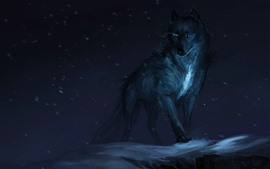 Black wolf, night, art picture