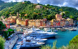 Preview wallpaper Italy, Portofino, harbour, city, yachts, trees