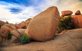 Preview wallpaper Joshua Tree National Park, stones, clouds, USA