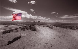 Preview wallpaper Monument Valley, flag, USA