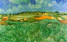 Preview wallpaper Oil painting, fields, countryside, Vincent van Gogh