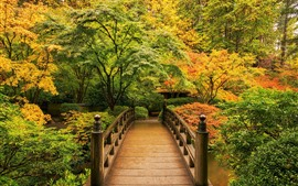 Preview wallpaper Park in the autumn, trees, wood bridge
