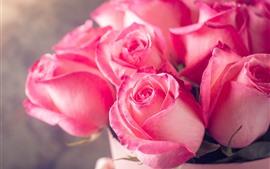 Rosas rosas, bouquet, brumoso, romántico.