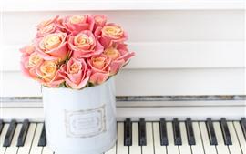 Розовые розы, фортепиано