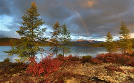 Rainbow, trees, lake, clouds, nature landscape