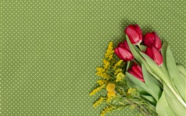 Preview wallpaper Red tulips, light green background
