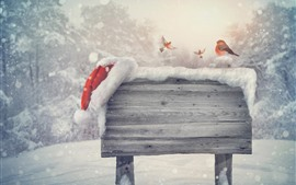 Preview wallpaper Snow, wood board, birds, winter, creative picture