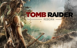 Preview wallpaper Tomb Raider Reborn
