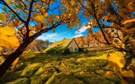 Preview wallpaper Turf Church, Iceland, trees, grass, autumn
