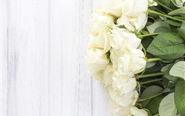 Preview wallpaper White roses, flowers, wood background