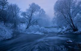 Зима, снег, деревья, река, туман, рассвет