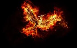 Phoenix bonito, asas, vôo, incêndio, fundo preto
