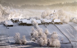 Beautiful winter, village, houses, white snow, trees, fog, morning