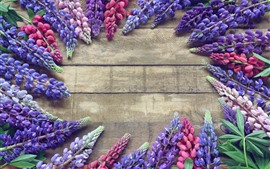 Preview wallpaper Colorful lupin flowers, spring