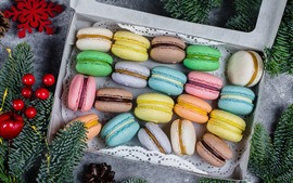 Colorful macaroons, pine twigs, Christmas decorations