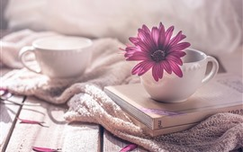 Preview wallpaper Cup, books, purple osteospermum flower