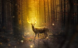 Preview wallpaper Deer, magic, fire, horns, forest