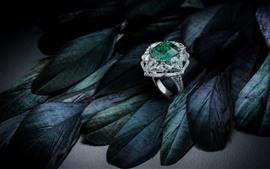 미리보기 배경 화면 다이아몬드 반지, 깃털