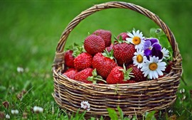 Preview wallpaper Fresh strawberries, basket