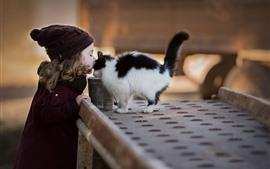 Девушка и пушистый кот, друзья