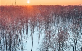 Preview wallpaper Lithuania, Kaunas, trees, park, sunset, snow, winter