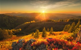 Preview wallpaper Mountains, trees, sun rays, glare, sunrise, nature landscape
