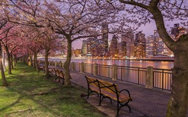 Preview wallpaper New York, street, bench, night, buildings, river, trees, lights