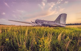 Preview wallpaper Old plane, grass