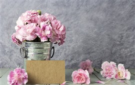 Pink roses, petals, water droplets