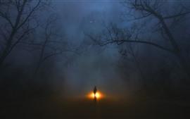 Árboles, niebla, monstruo, hombre, noche.