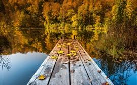 Árboles, lago, muelle, otoño