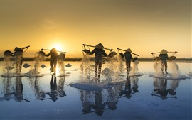 Vietnam, people, salt, morning, sun rays