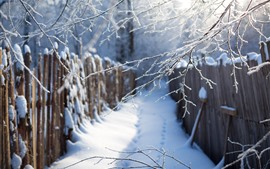 Preview wallpaper Winter, snow, twigs, path, fence